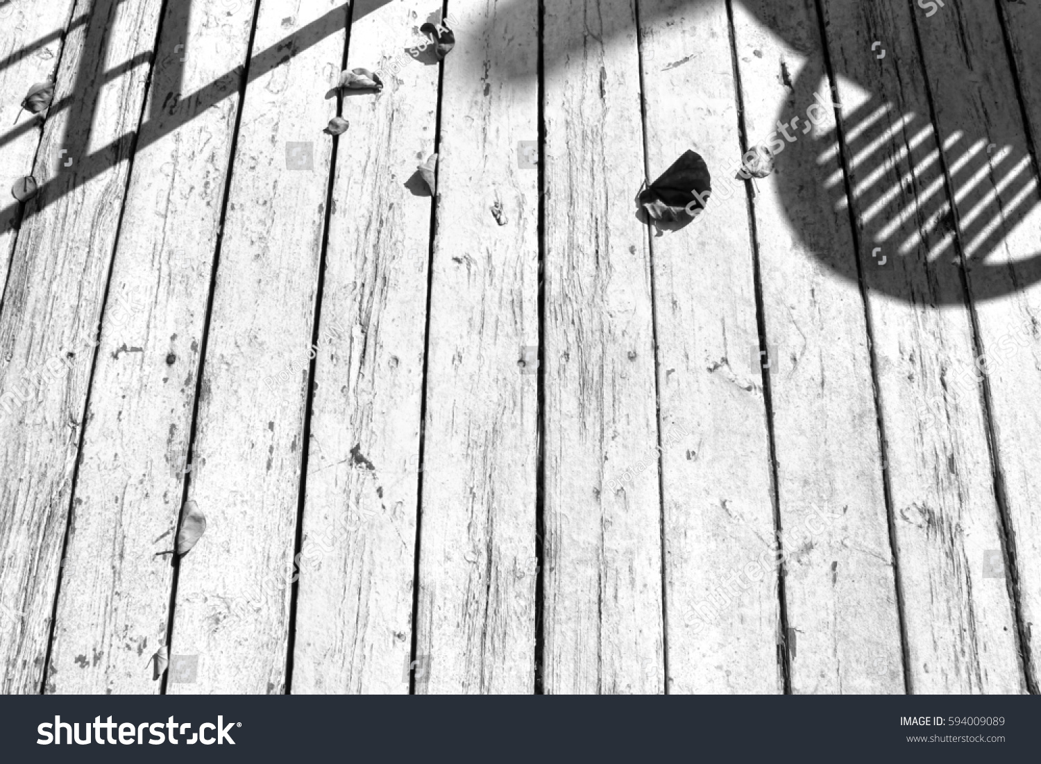 Rustic White Wood Floor With Fallen Dry Leaves And Furniture Hard Shadows  On Shabby Boards.