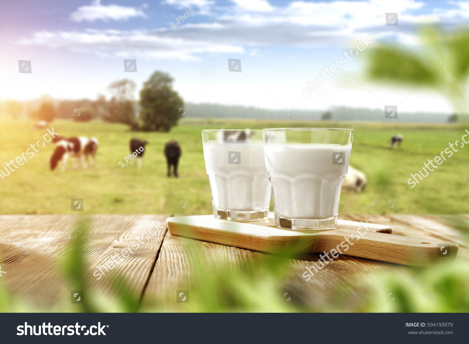 fresh milk and spring time  #594193979