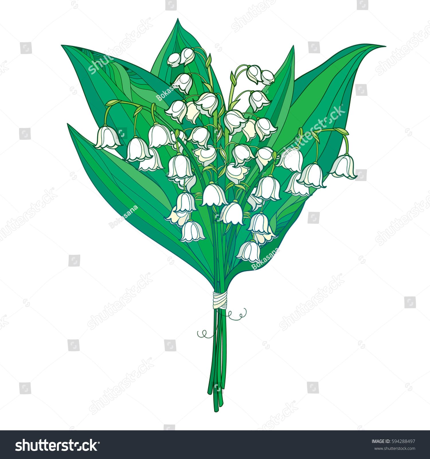Vector Bouquet Outline White Lily Valley Stock Vector Royalty Free