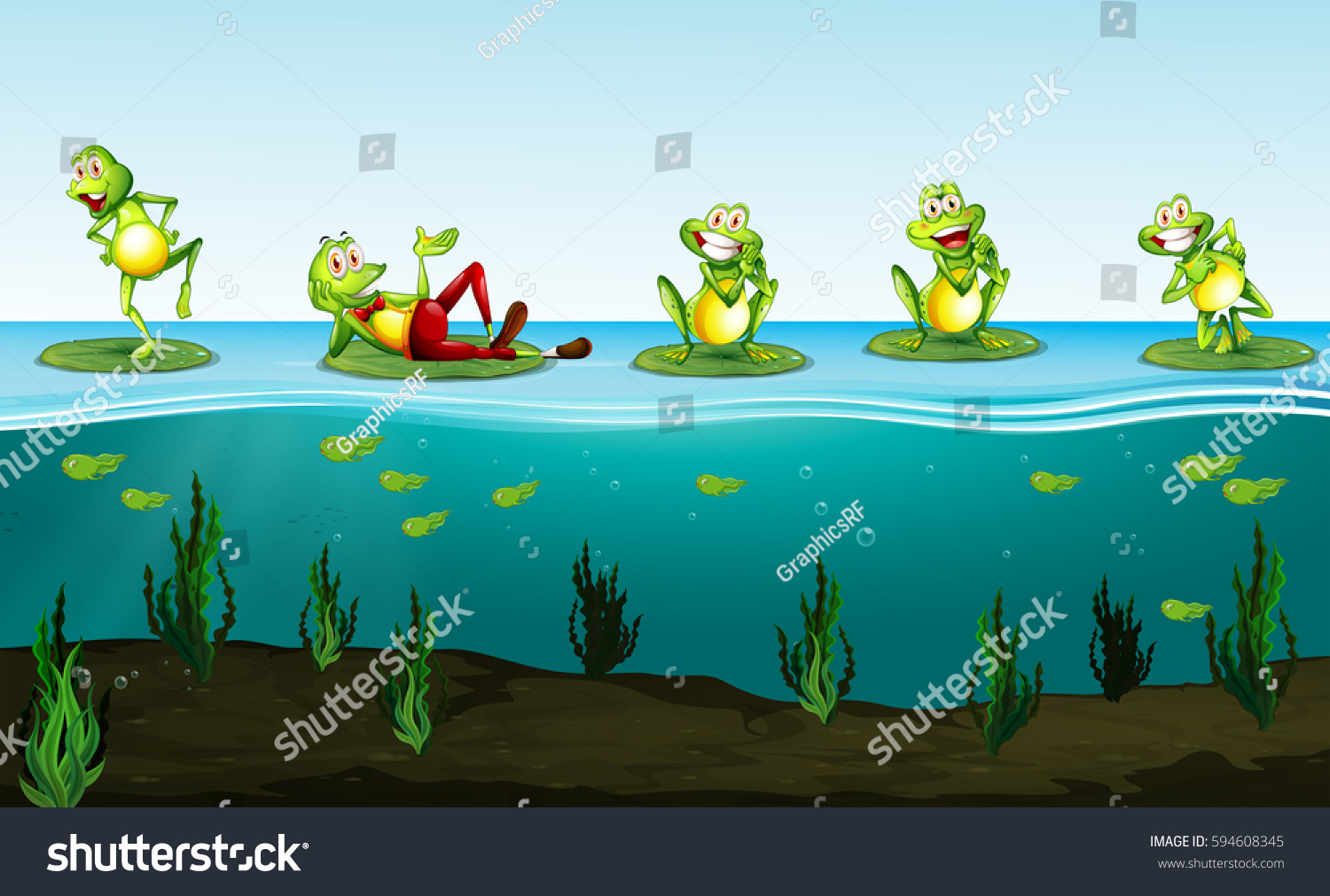 frogs floating on lily pads stock vector 594608345 shutterstock