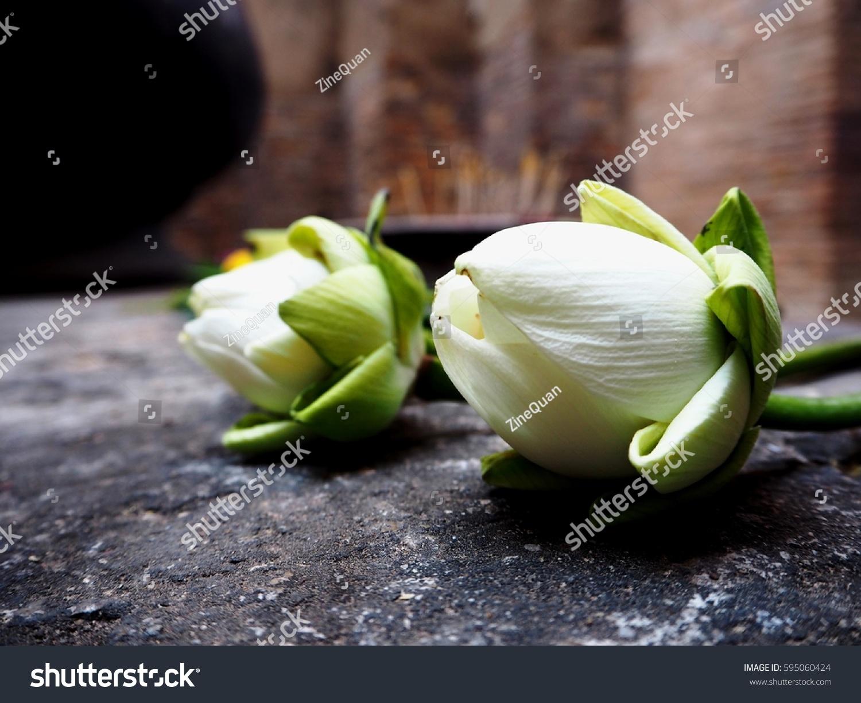 Lotus flower buddha praying stock photo edit now 595060424 lotus flower for buddha praying mightylinksfo