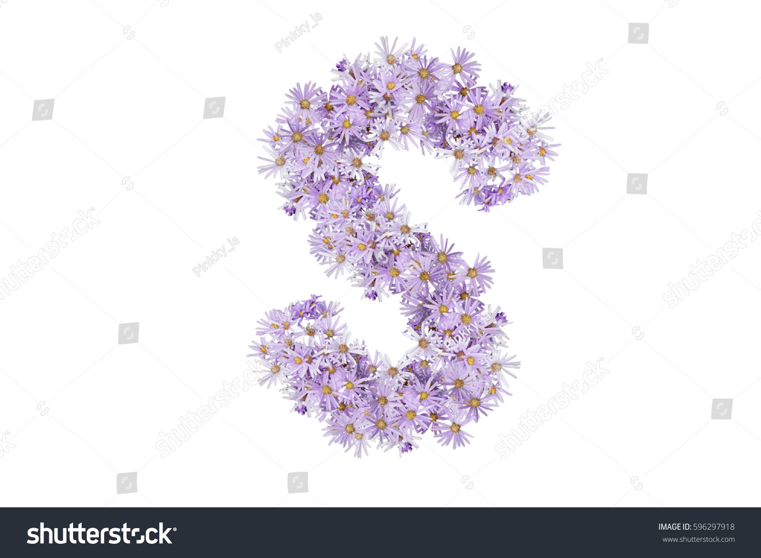 Letter S Purple Flowers Isolated On Stock Photo Edit Now 596297918