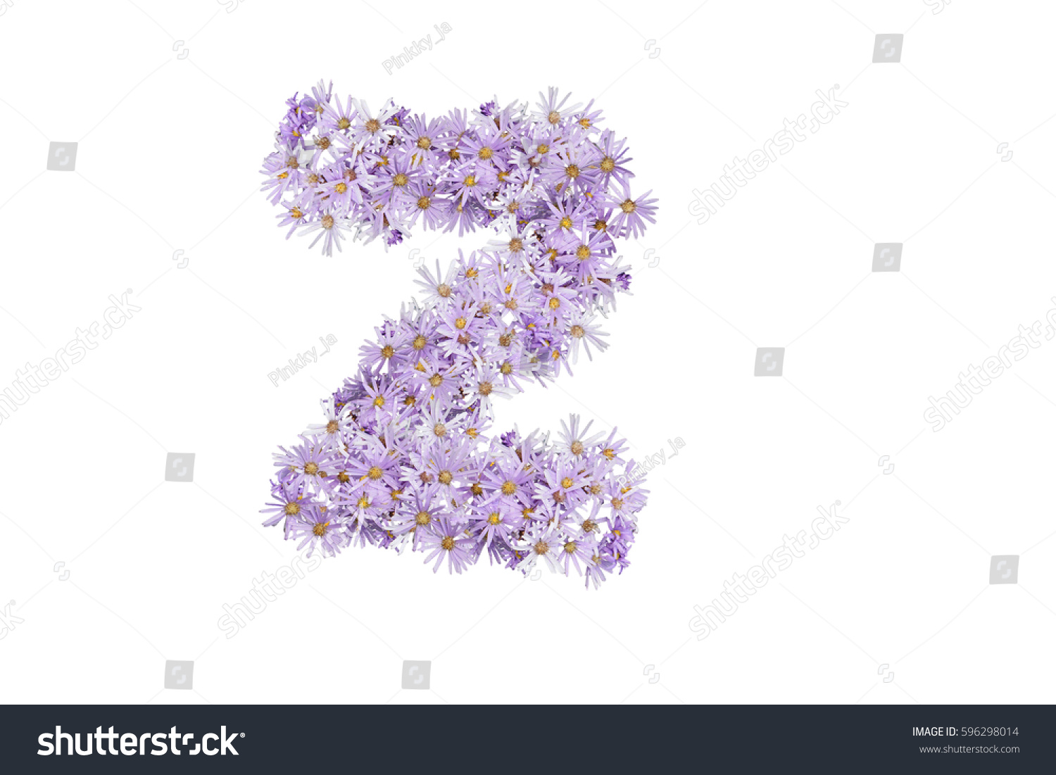 Letter Z Purple Flowers Isolated On Stock Photo Edit Now 596298014