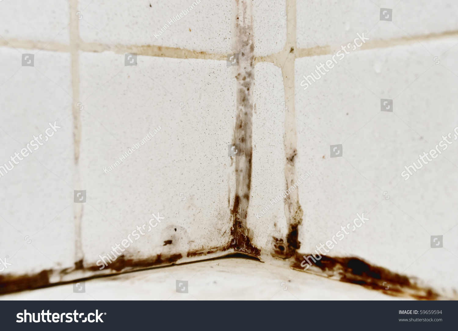 how to clean black mould from tiles