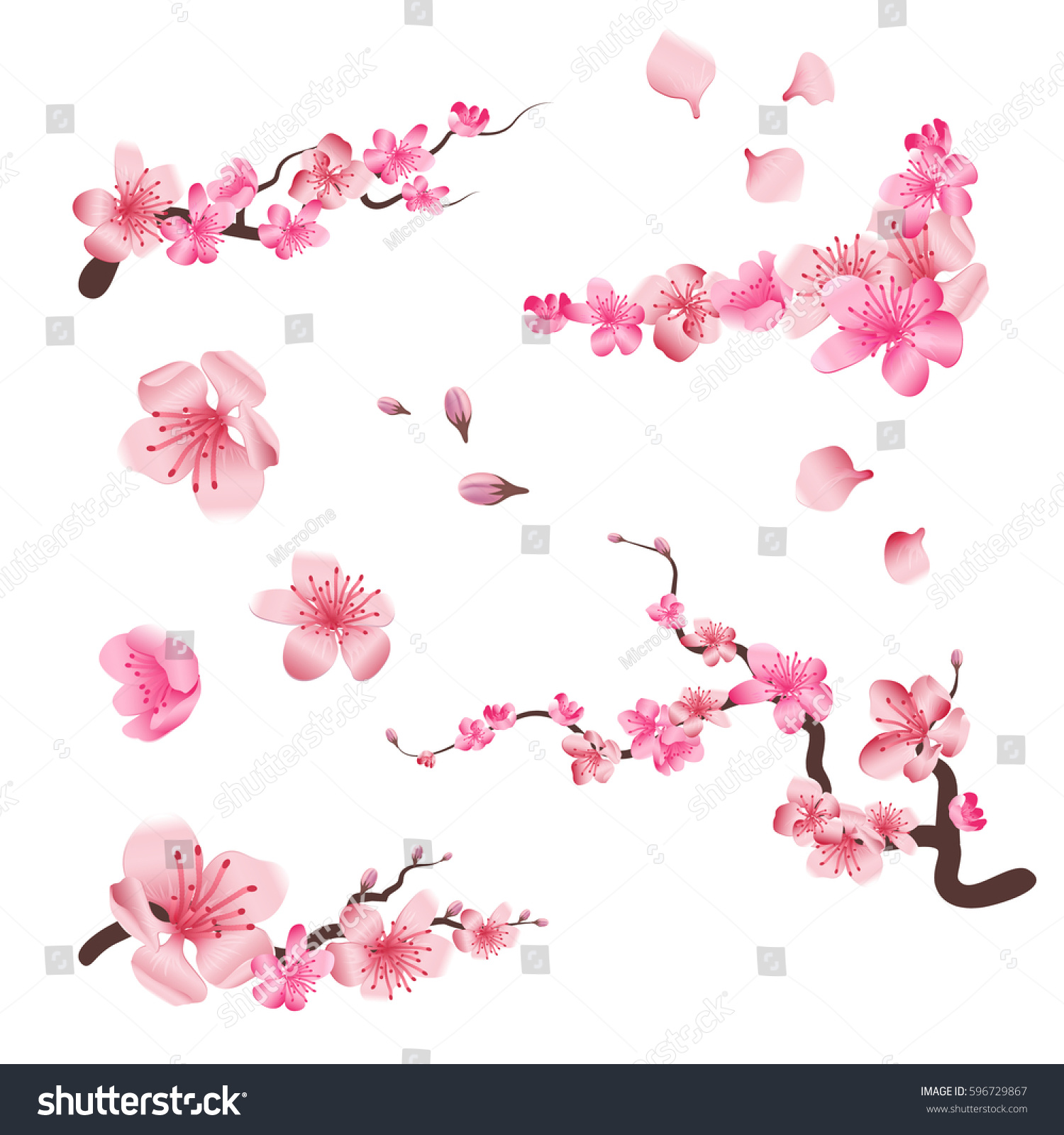 Spring sakura cherry blooming flowers, pink petals and branches vector set for your own design