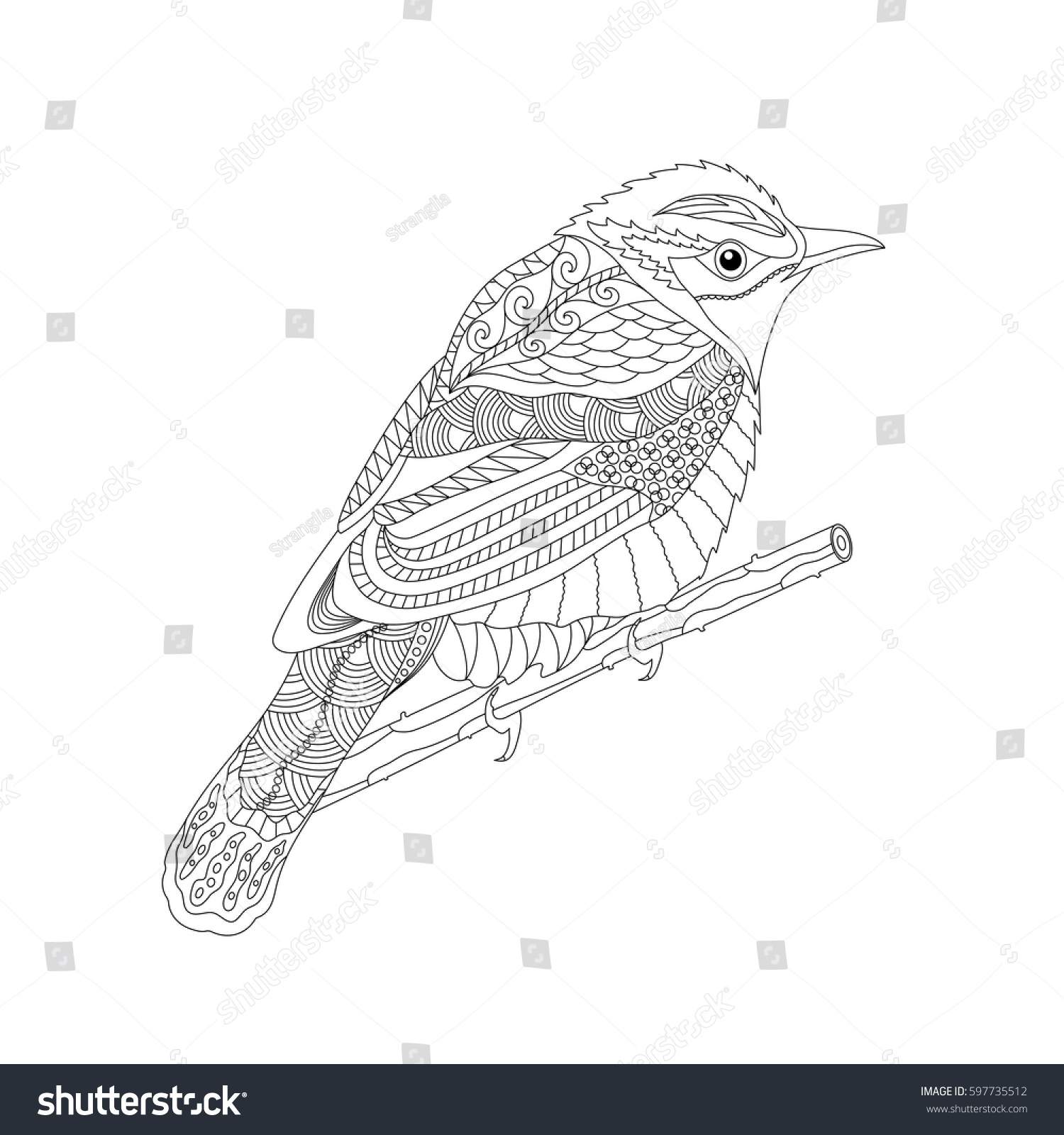 Coloring books for adults and children - Coloring Book For Adults And Children Fantasy Bird On A Branch Black And White