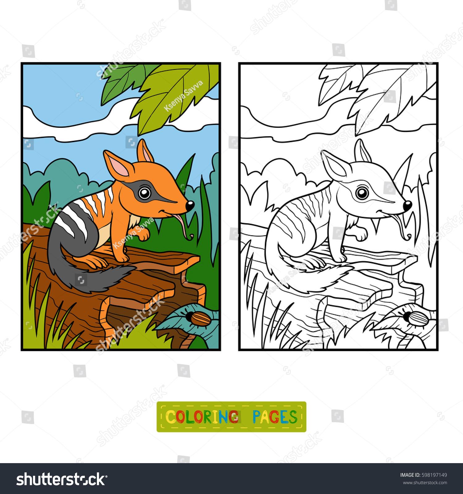 Coloring Book Children Numbat Background Stock Vector 598197149