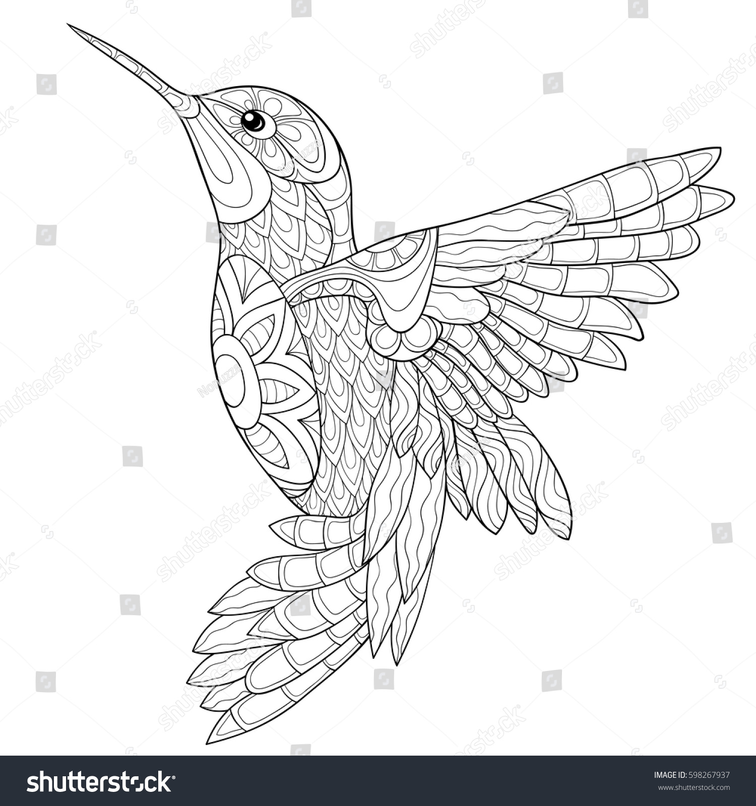 Adult Coloring Book Humming Birdzen Art Style Vector Illustration