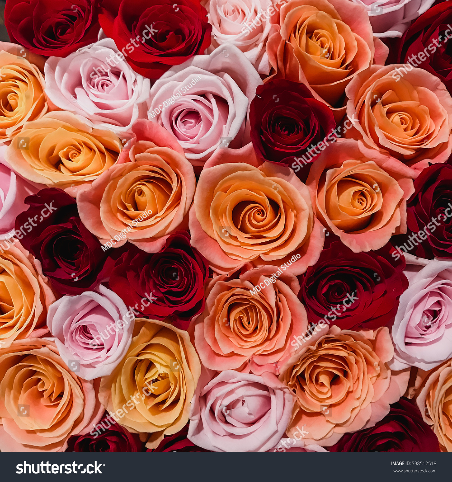 Bouquet roses different colors top view stock photo for Different color roses bouquet