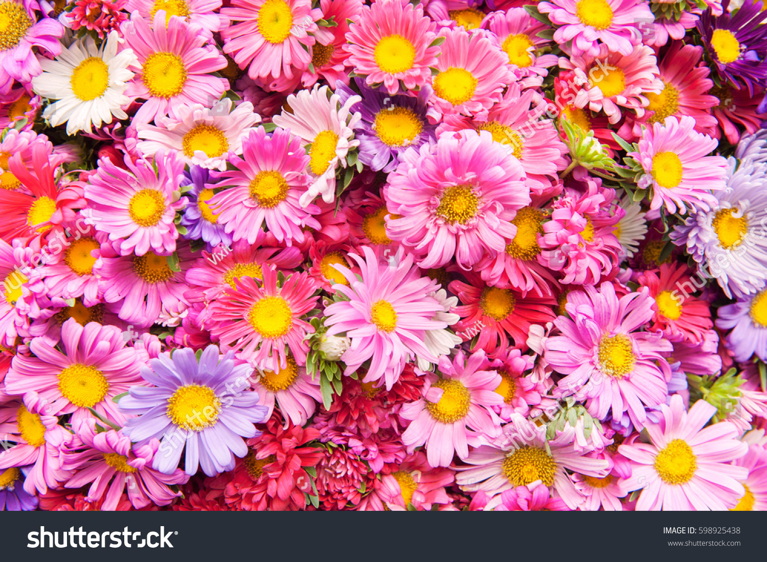 Beautiful Flower Background Bunch Flowers Festive Stock Photo Edit
