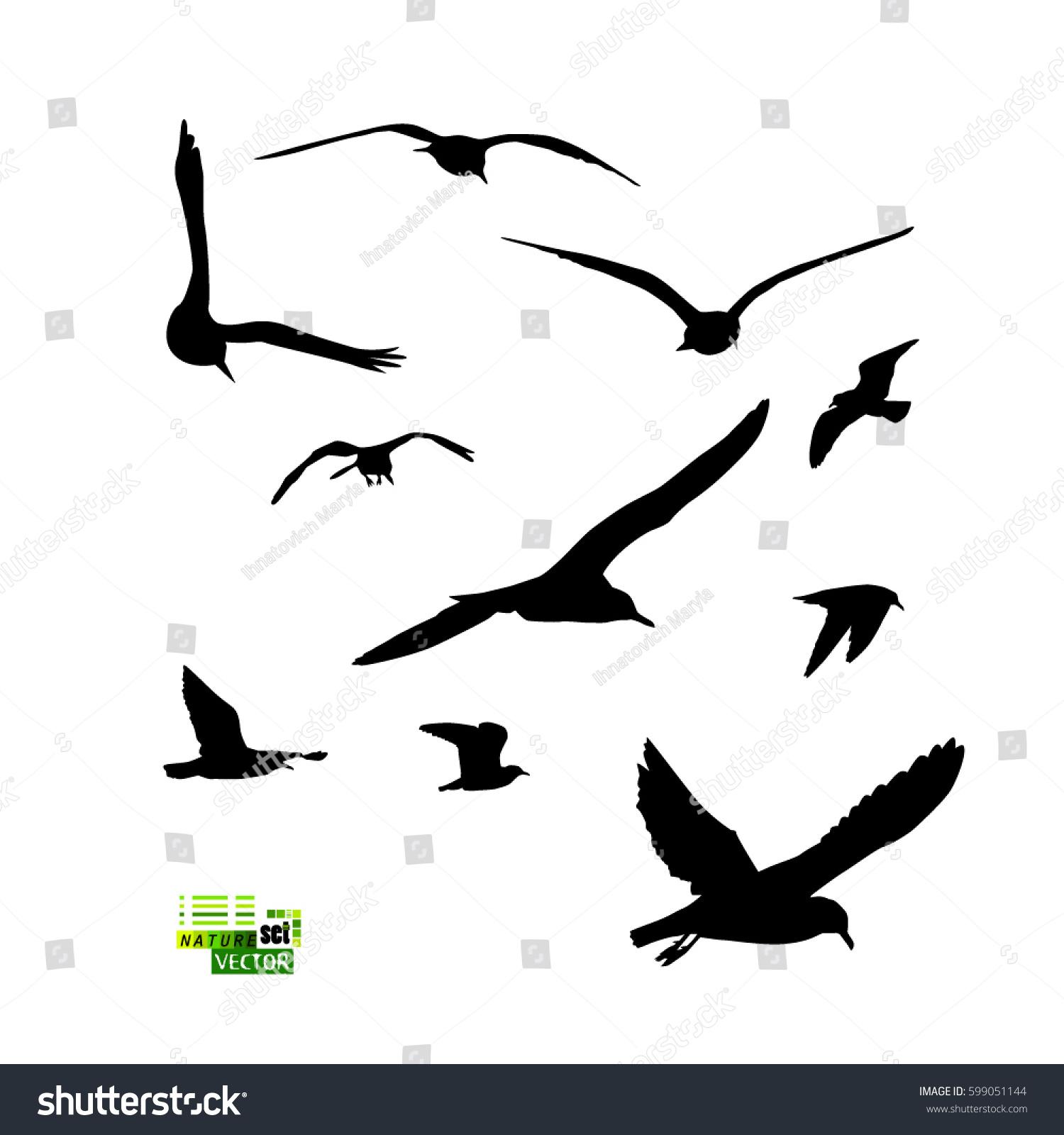 set flying seagull vector stock vector 2018 599051144 shutterstock rh shutterstock com seagull vector image seagull vector art free