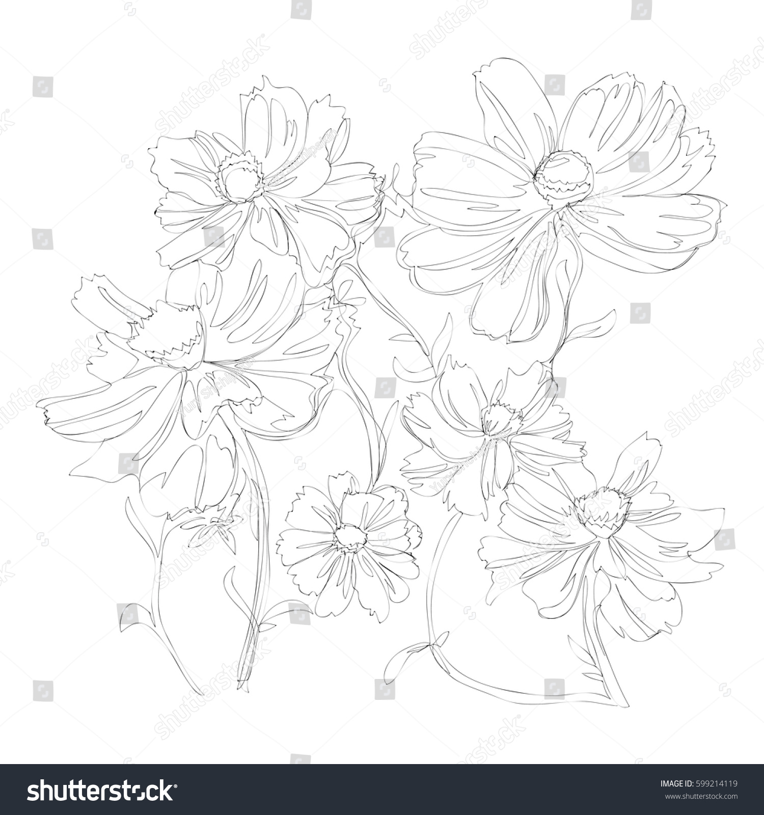 Beautiful Flower Line Drawing : Beautiful flowers line art continuous stock vector