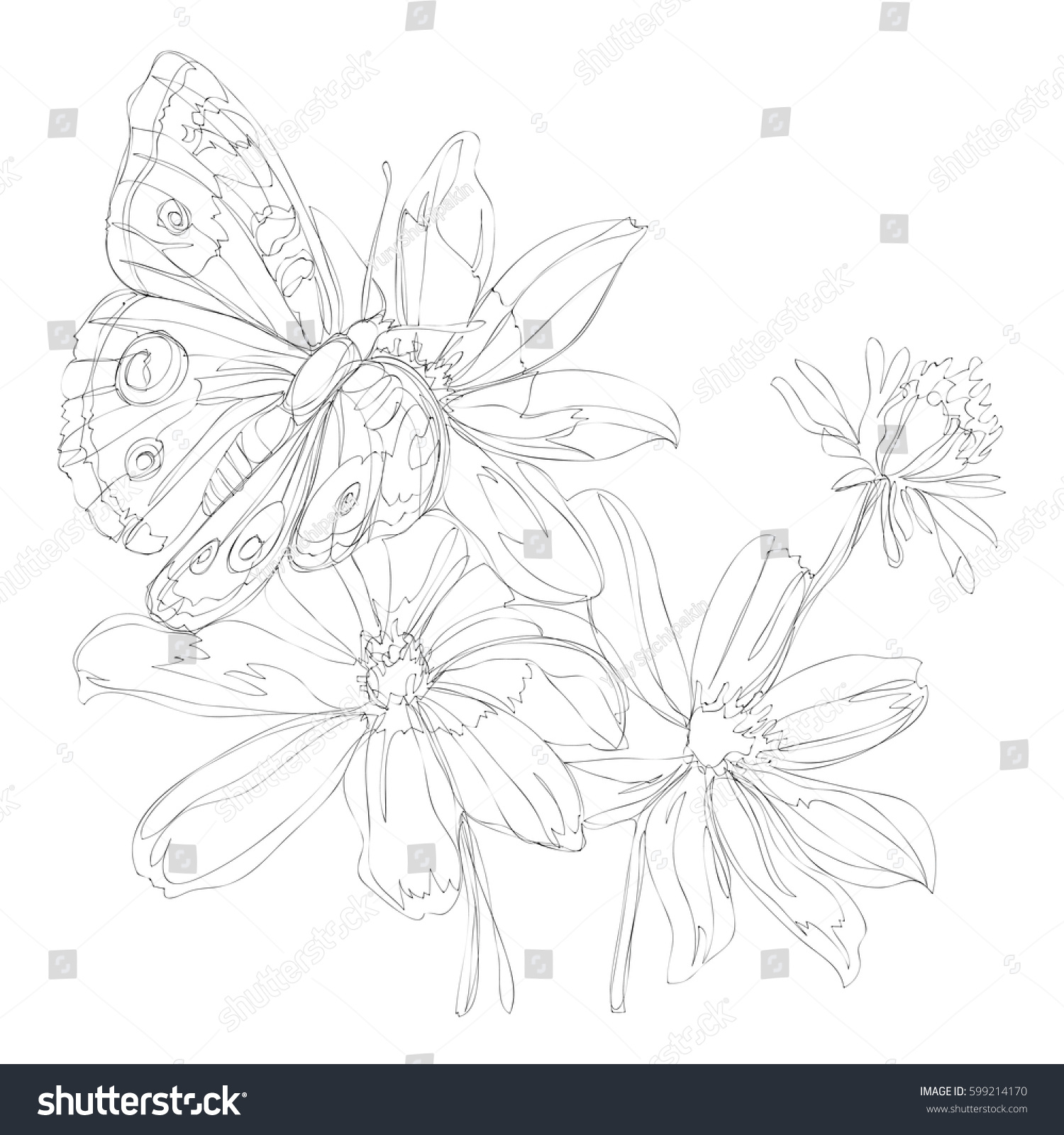 Continuous Line Drawing Flowers : Beautiful flowers line art continuous stock vector