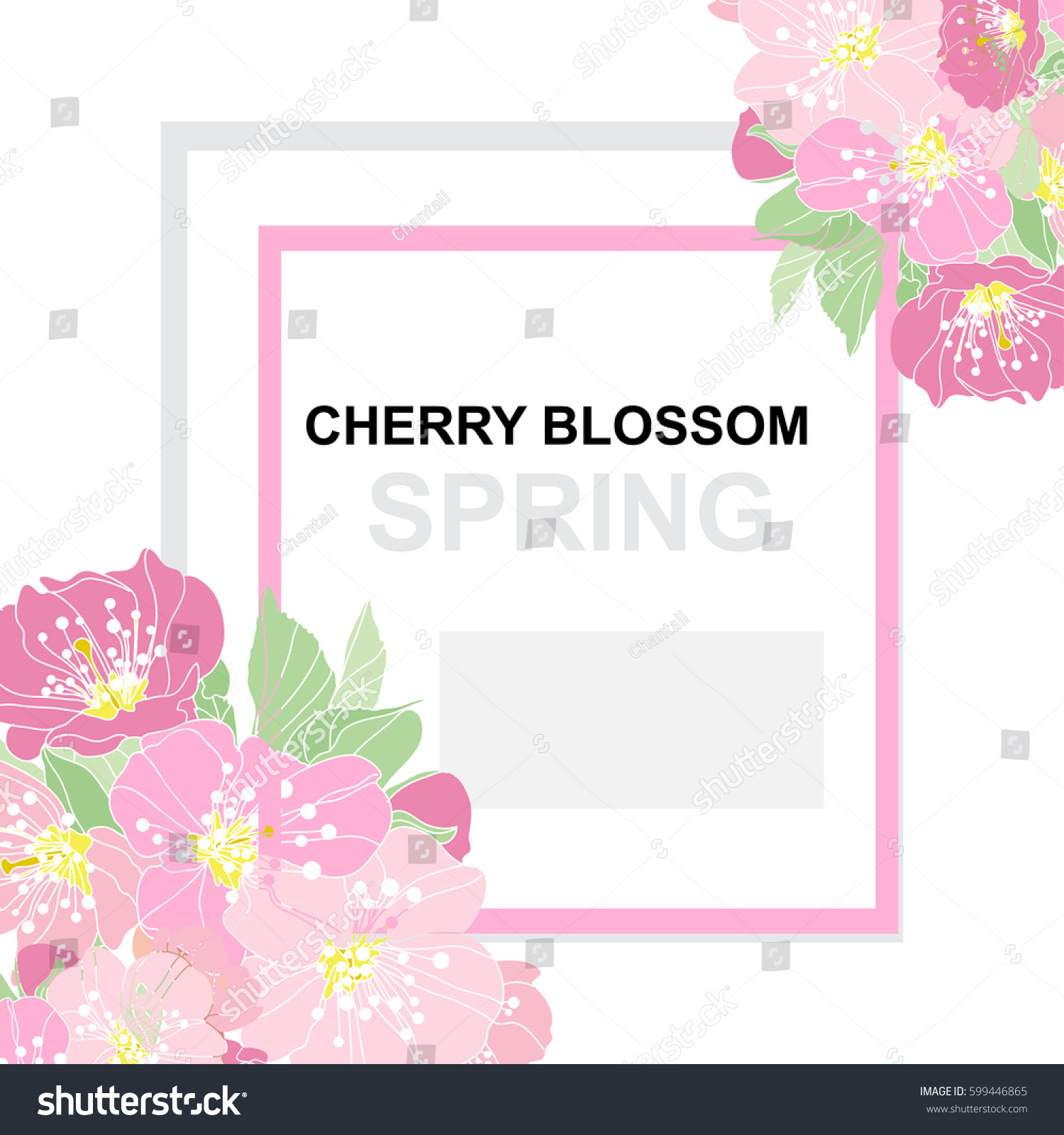 Elegant Card Decorative Cherry Blossom Flowers Stock Vector ...