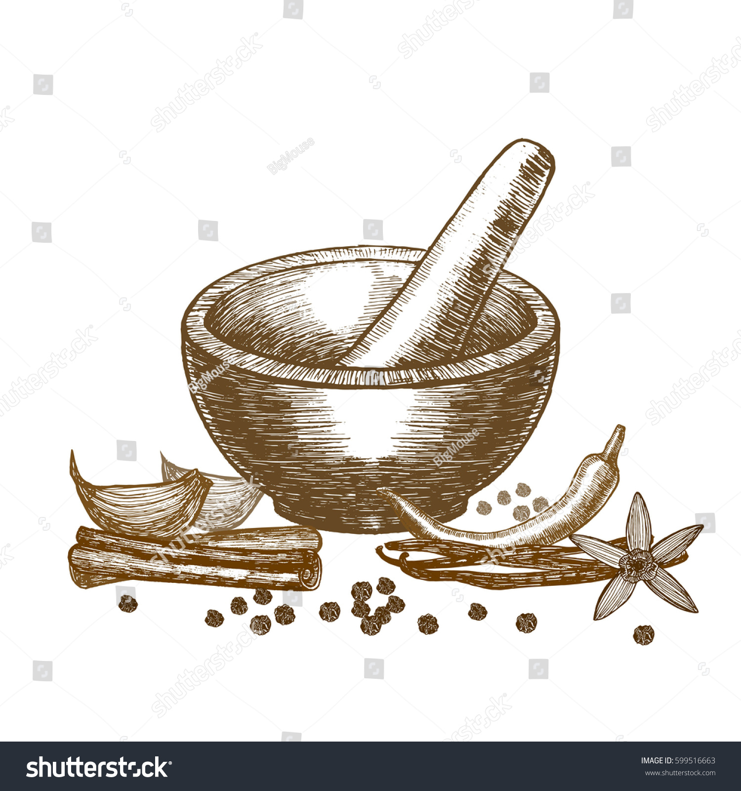 Spices Mortar Pestle Hand Draw Sketch Stock Illustration 599516663 ... for Mortar And Pestle Drawing  174mzq
