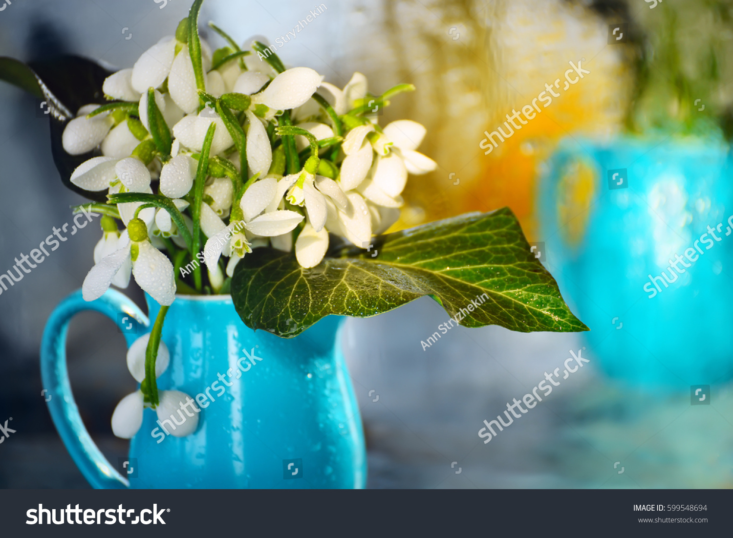 Tender Beautiful White Flowers Snowdrops Blue Stock Photo
