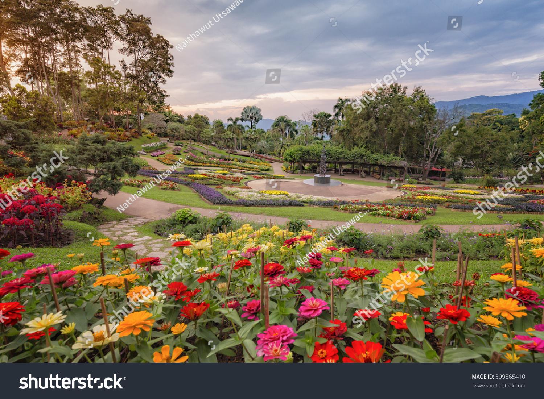 Garden Doi Tung Royal Villa Chiang Stock Photo (Edit Now) 599565410 ...