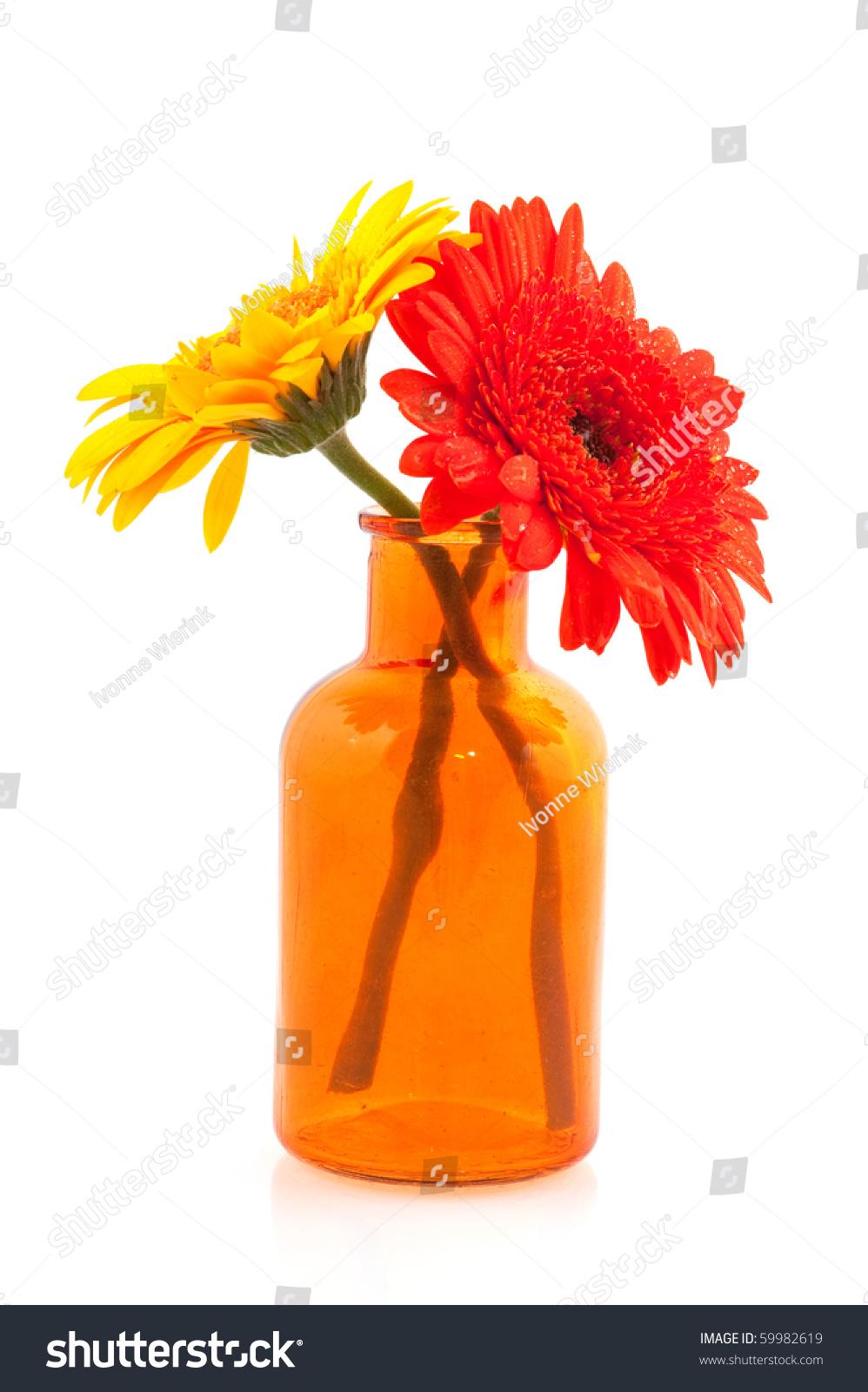 Yellow Orange Gerber Flower Glass Vase Stock Photo ...