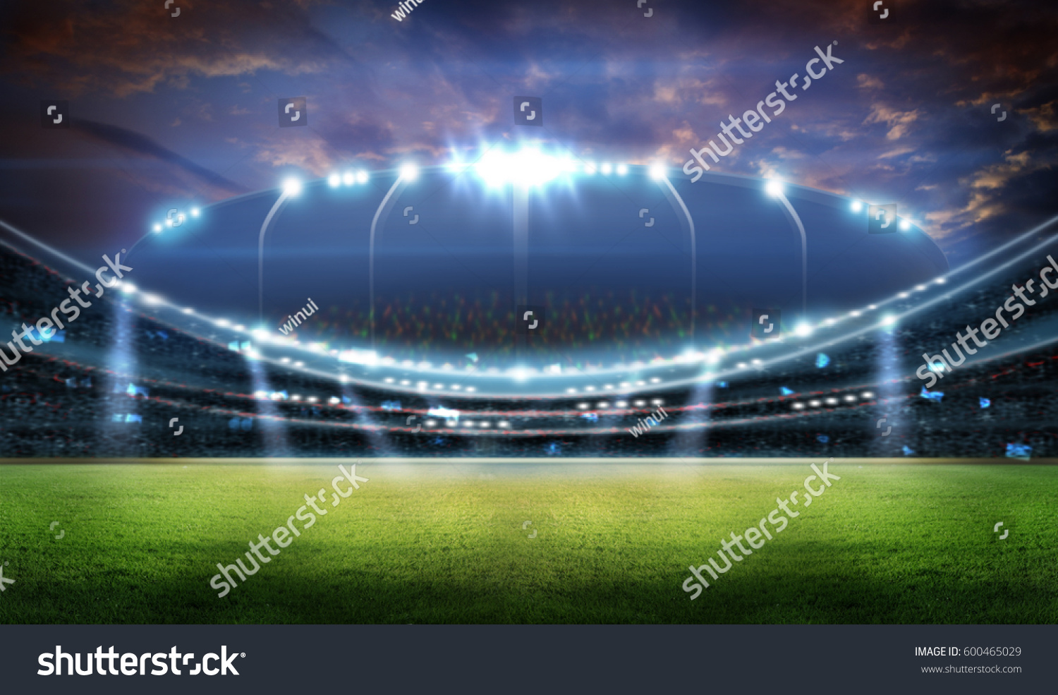 stadium in lights and flashes 3d. #600465029