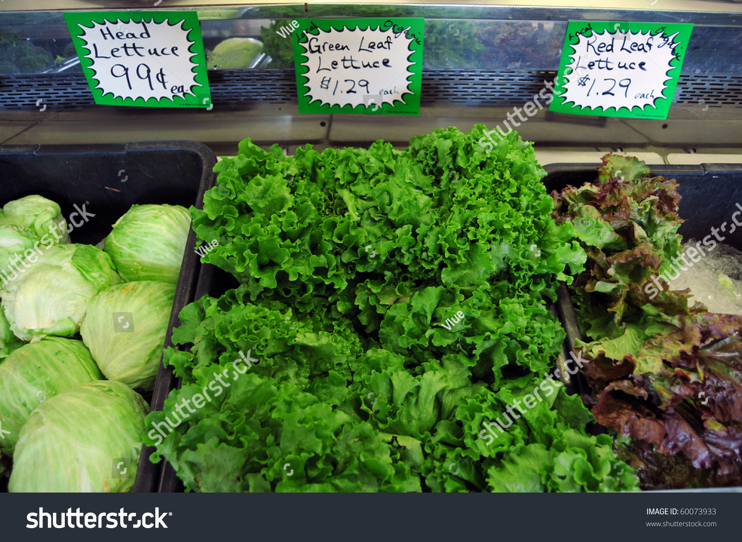 Grocery Store Lettuce