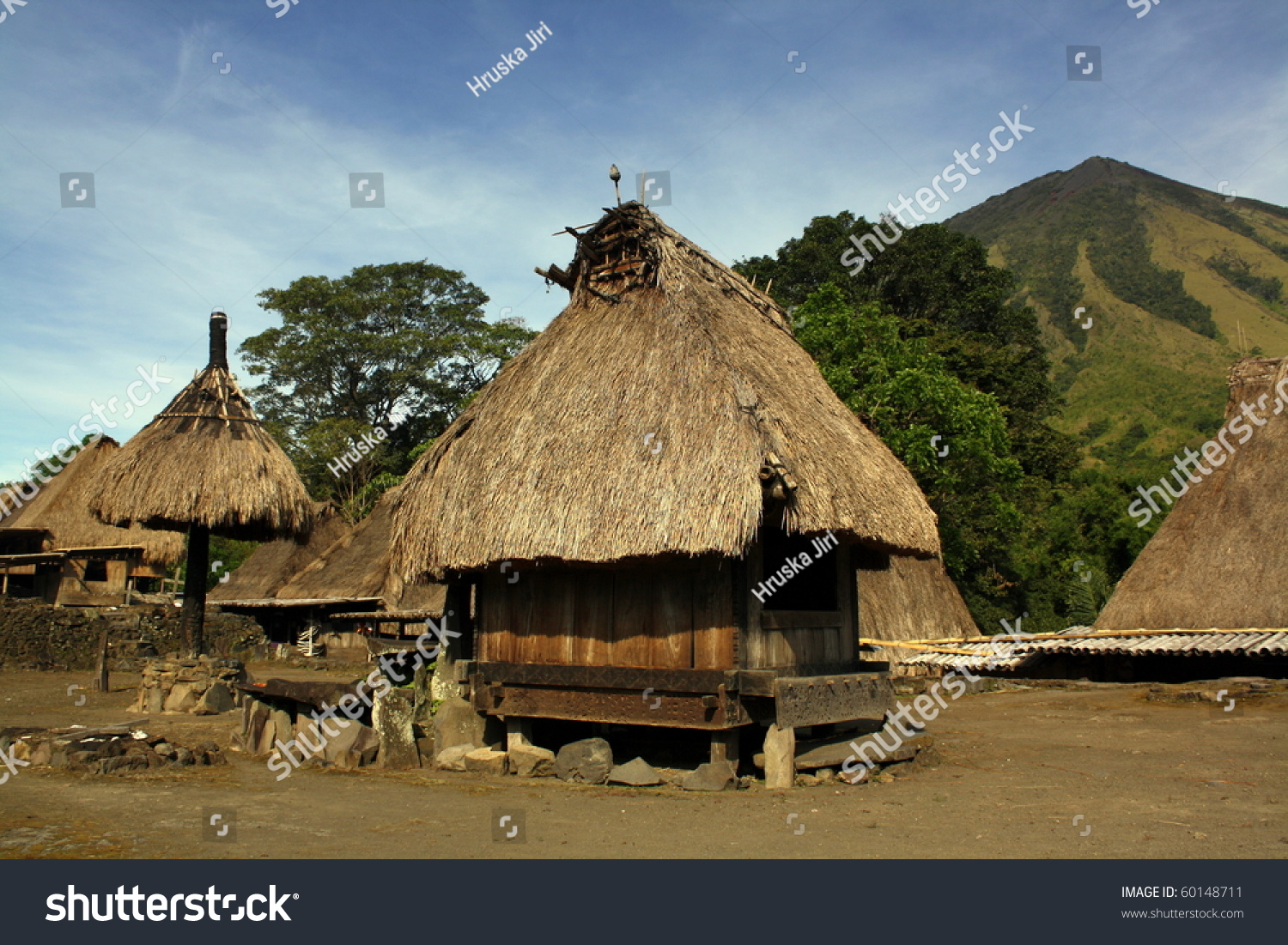 Bajawa Indonesia  City pictures : Traditional Vilage In Bajawa Flores Indonesia Stock Photo 60148711 ...