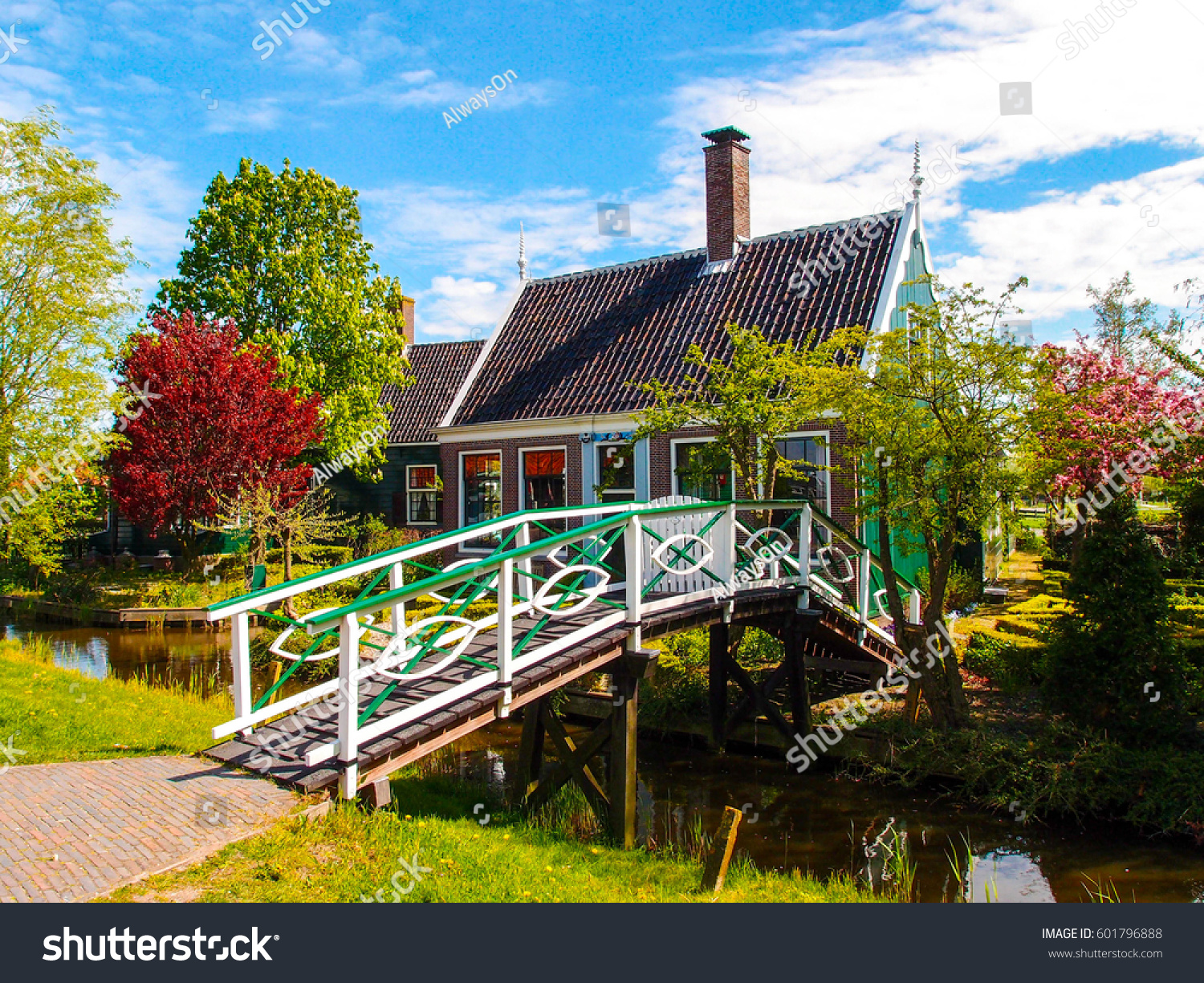 Netherlands typical dutch green house beautiful stock for Colorful tree house