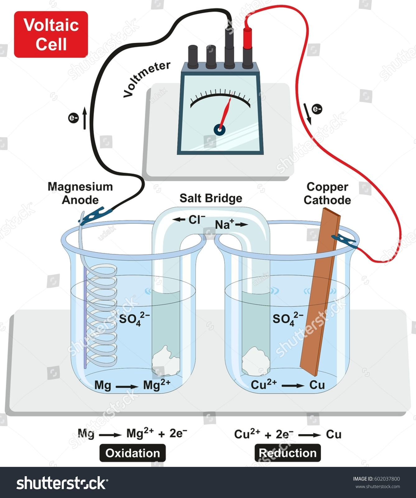 Lemon Battery Voltmeter Diagram Data Wiring Diagrams Potato Dry Cell Homedecoringideas Us Experiment Results