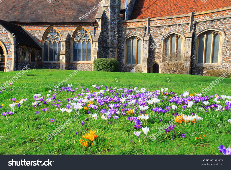 Beautiful Flowers On Spring Garden English Stock Photo Edit Now