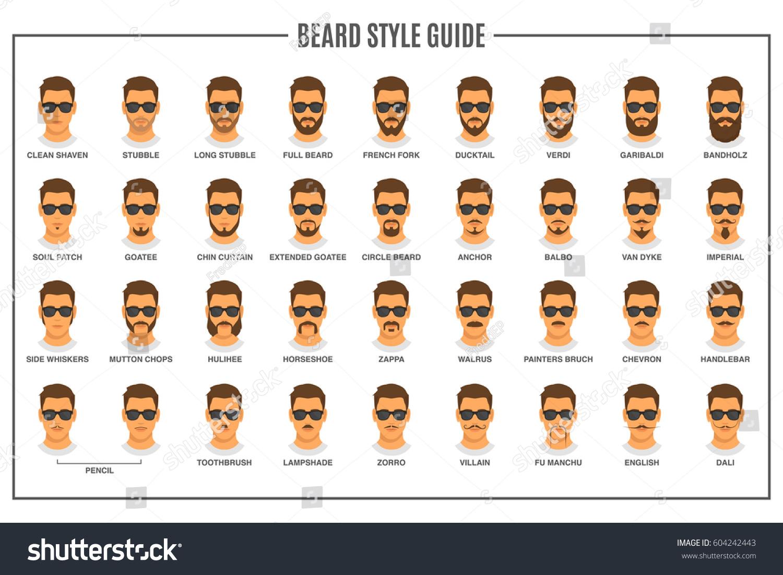 beard styles guide facial hair types stock vector 604242443