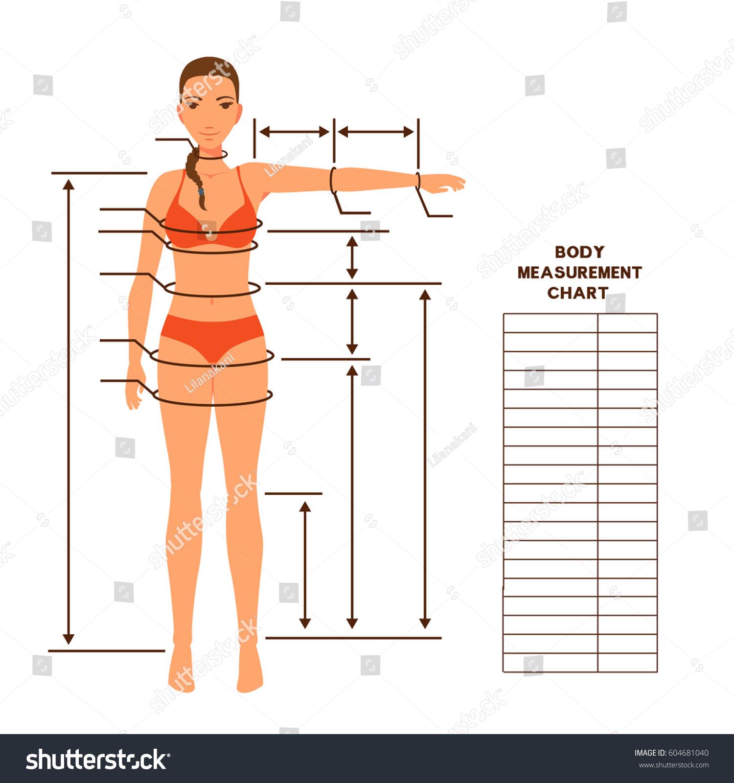 Woman Body Measurement Chart Scheme Measurement Stock Vector ...