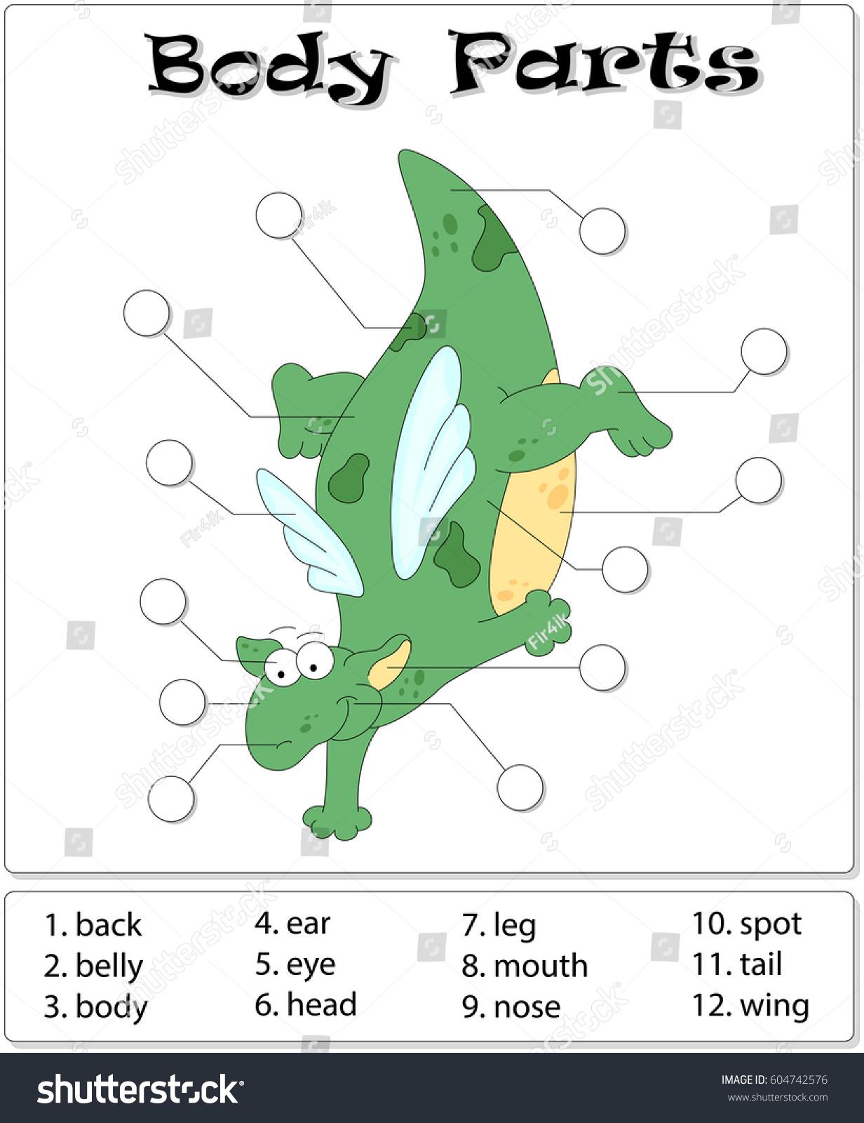 Cartoon Dragon Anatomy English Write Correct Stock Illustration ...