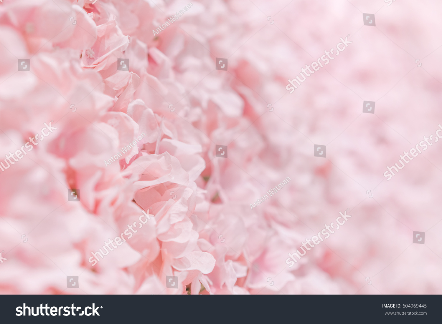 Pink Fake Flowers Background Texture Stock Photo 100 Legal