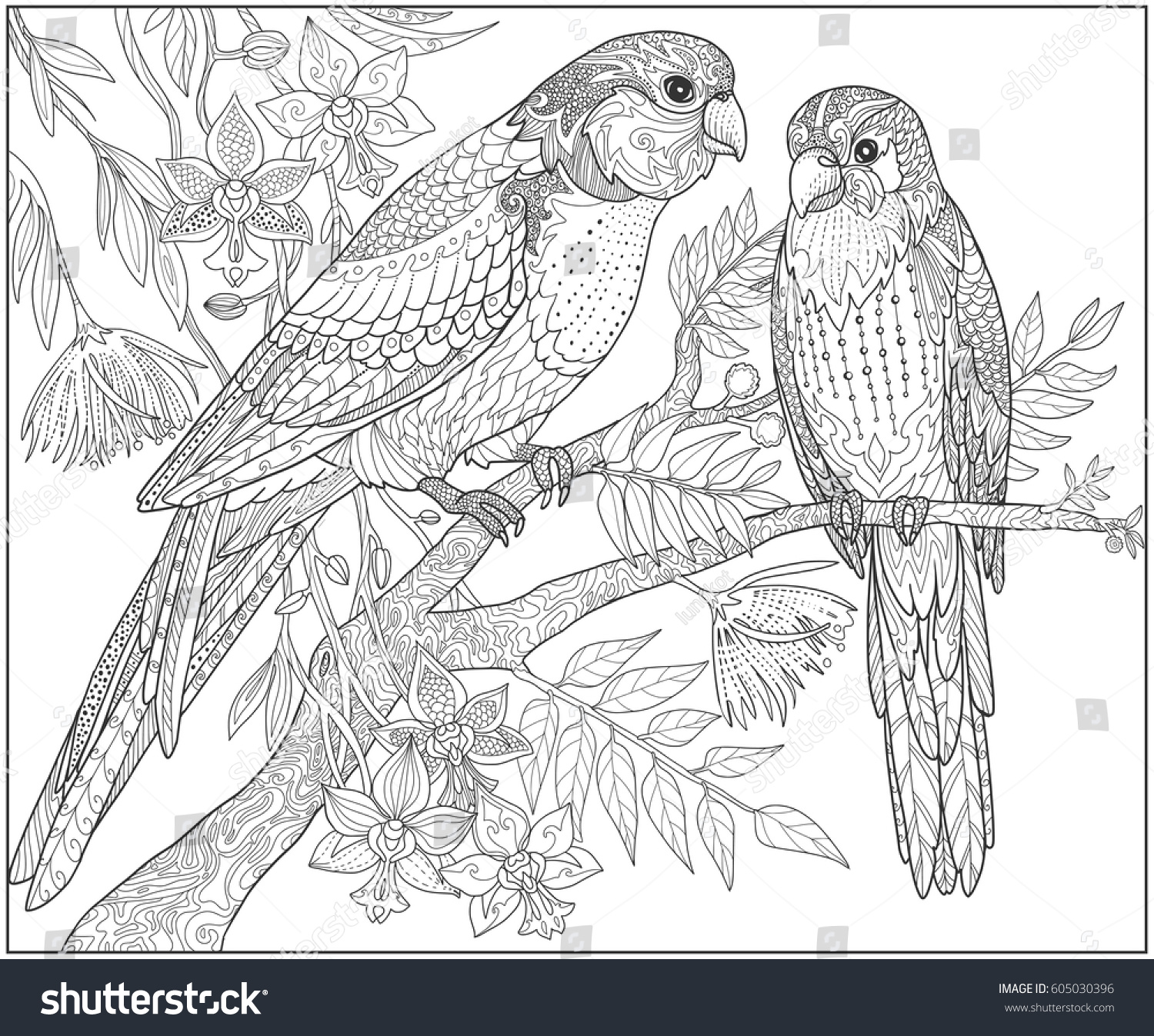 Two Parrots Sit On A Branch In The Jungle Adult Coloring Book Page Doodle