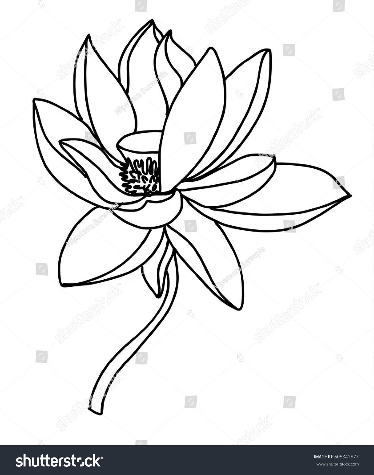 Hand Drawn And Sketch Lotus Flower Ez Canvas