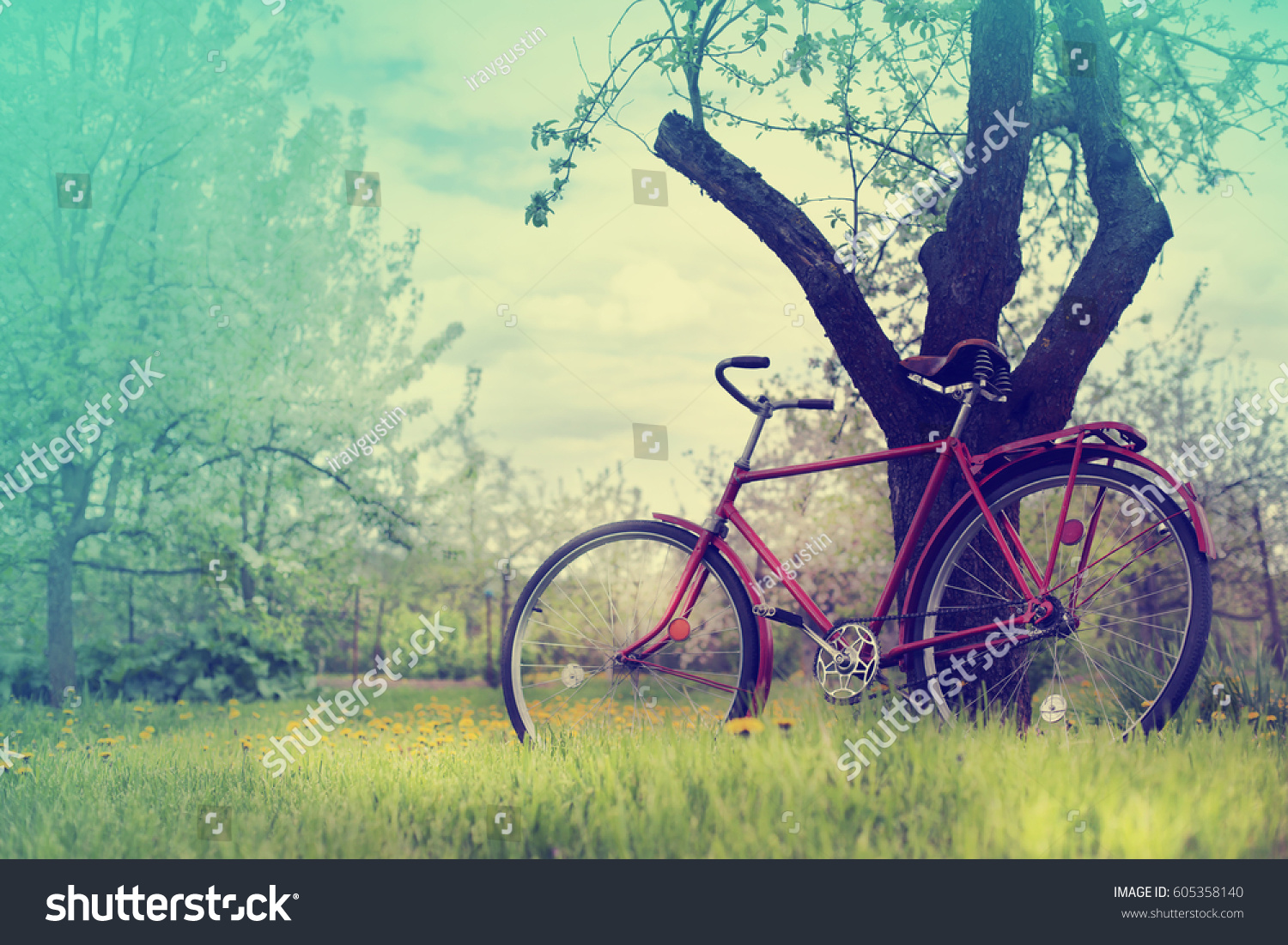 Vintage Bicycle Waiting Near Tree Against Stock Photo (Royalty Free ...