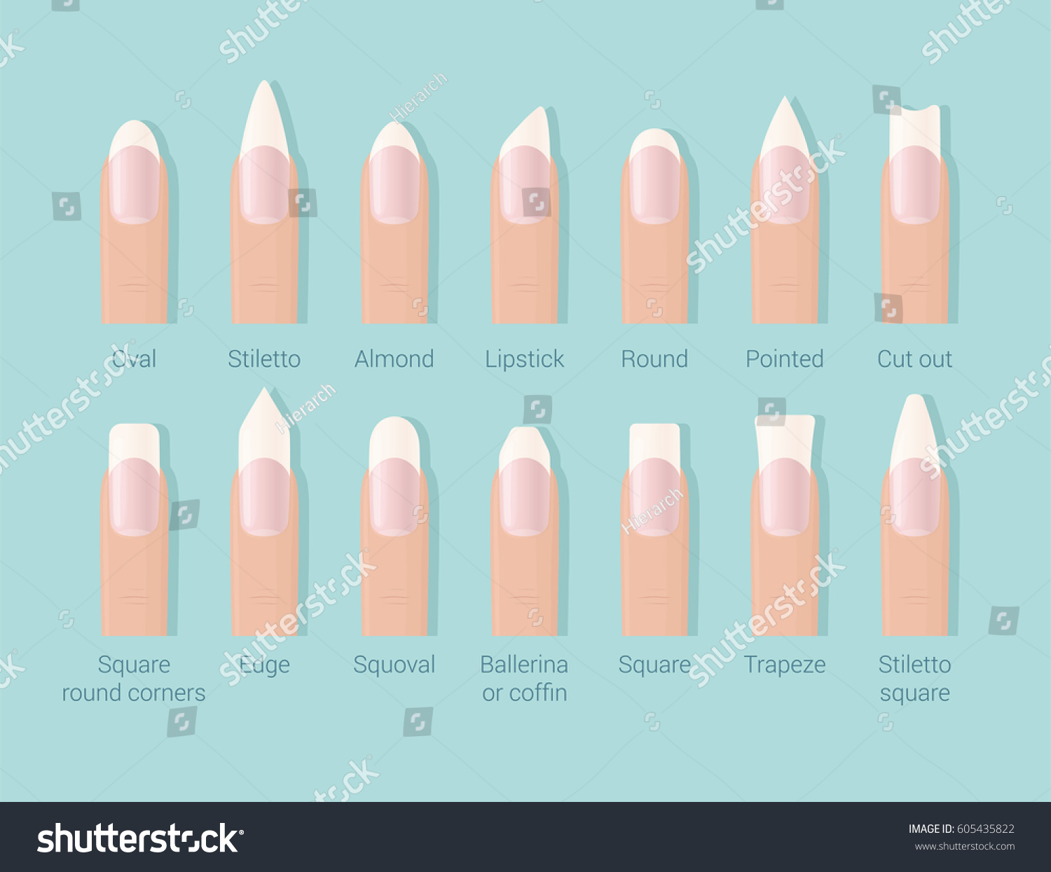 Professional Female Manicure Different Shapes Nails Stock Vector ...