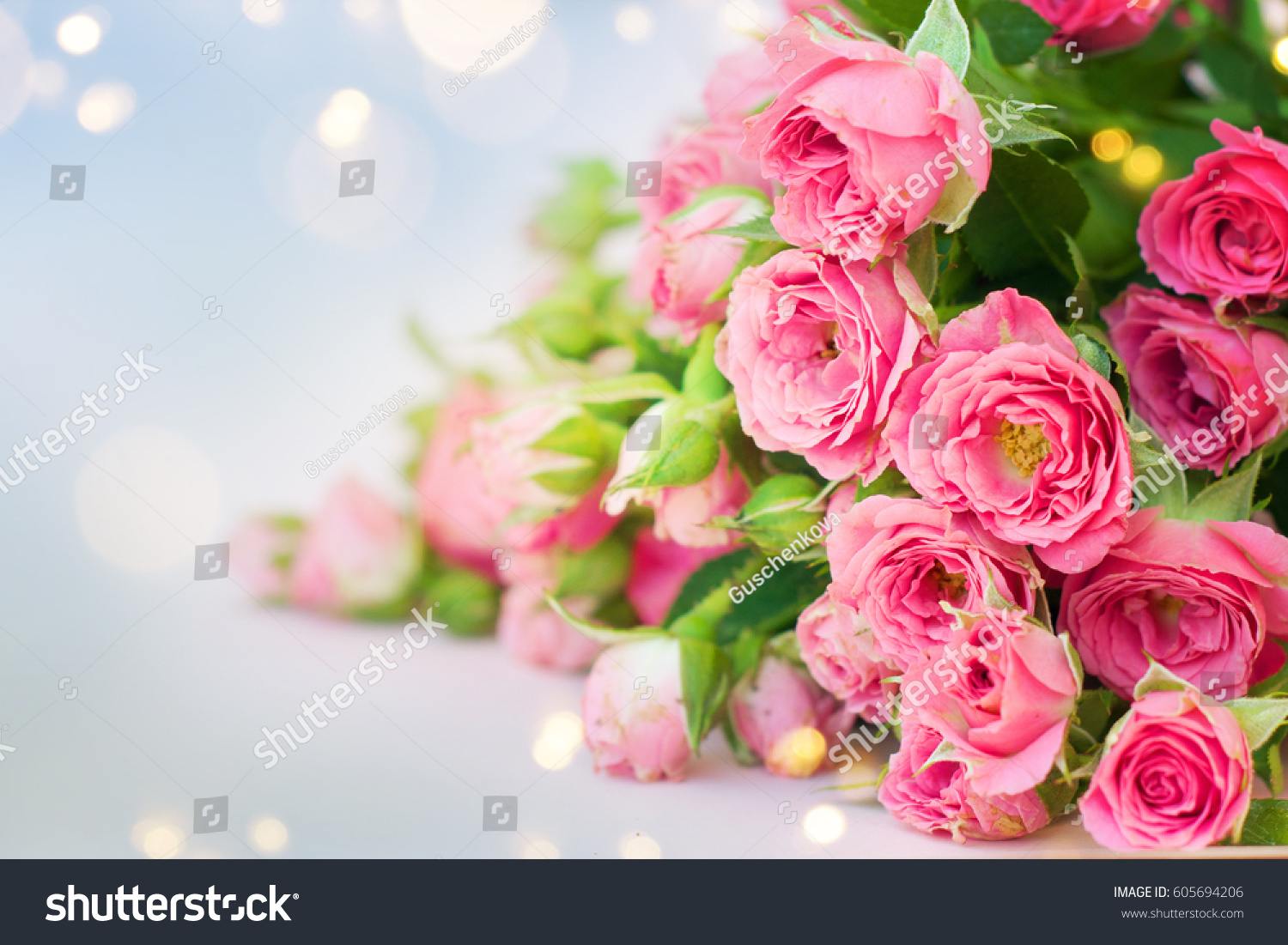 Roses Mothers Day Stock Photo 605694206 - Shutterstock