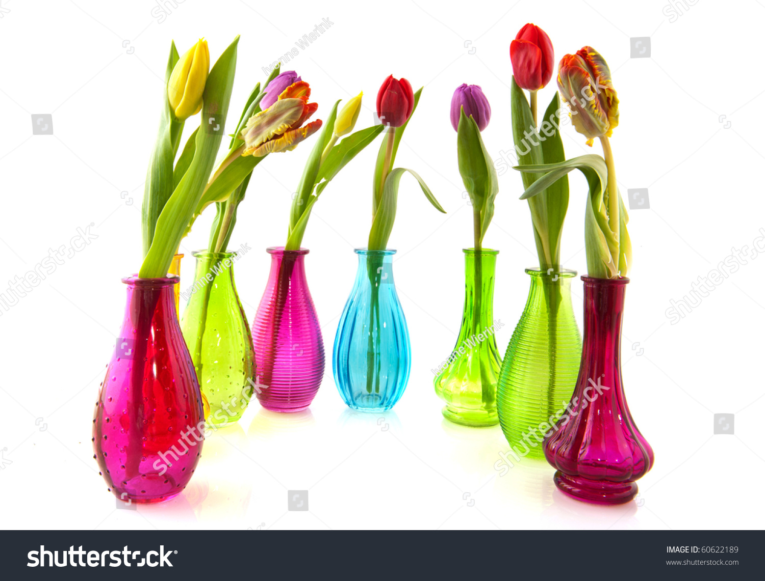 Colorful tulips colored glass vases on stock photo 60622189 colorful tulips in colored glass vases on white background reviewsmspy