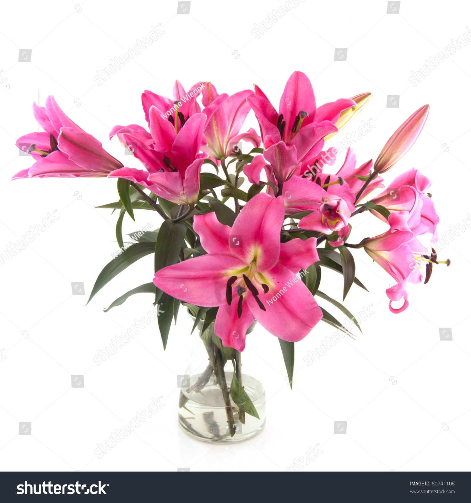Bouquet Pink Lily Flowers Glass Vase Stock Photo Download Now