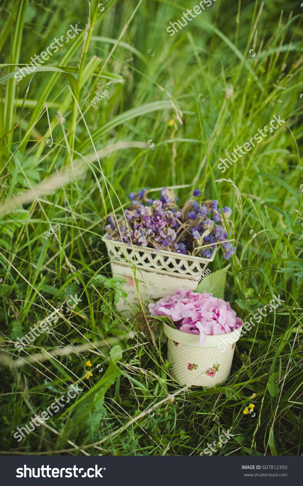 Purple Flowers Small Vase On Grass Stock Photo Image Royalty Free