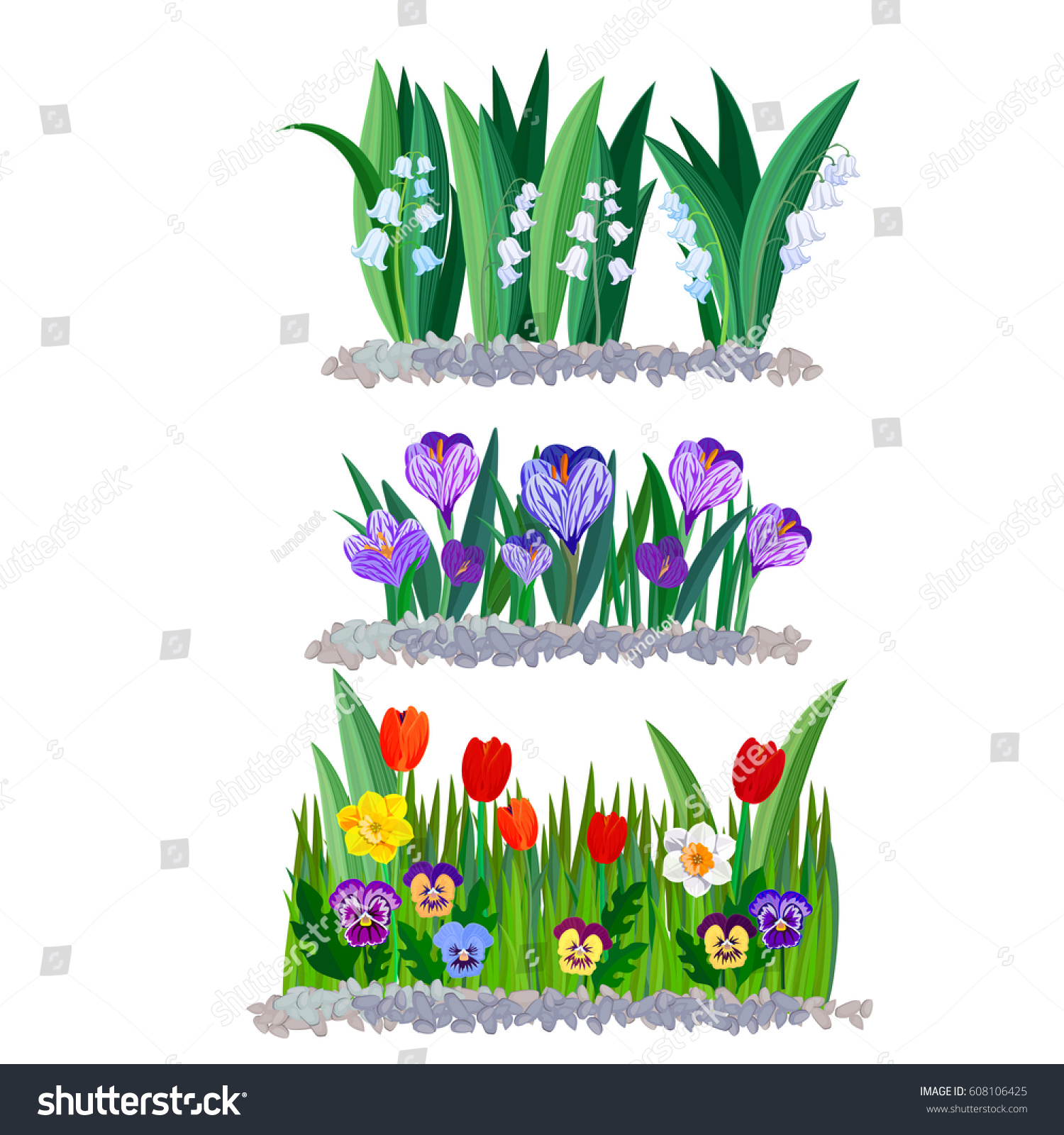 Spring Flowers Lily Valley Crocus Tulips Stock Vector 608106425
