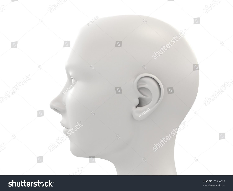 3d woman head anatomy study side view ez canvas