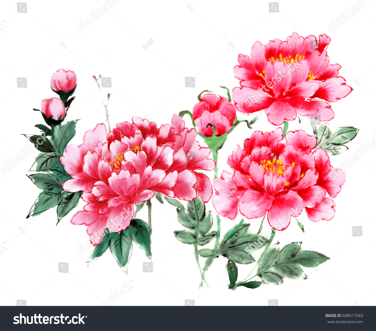 Traditional Ancient Chinese Hand Painted Peony Stock Illustration