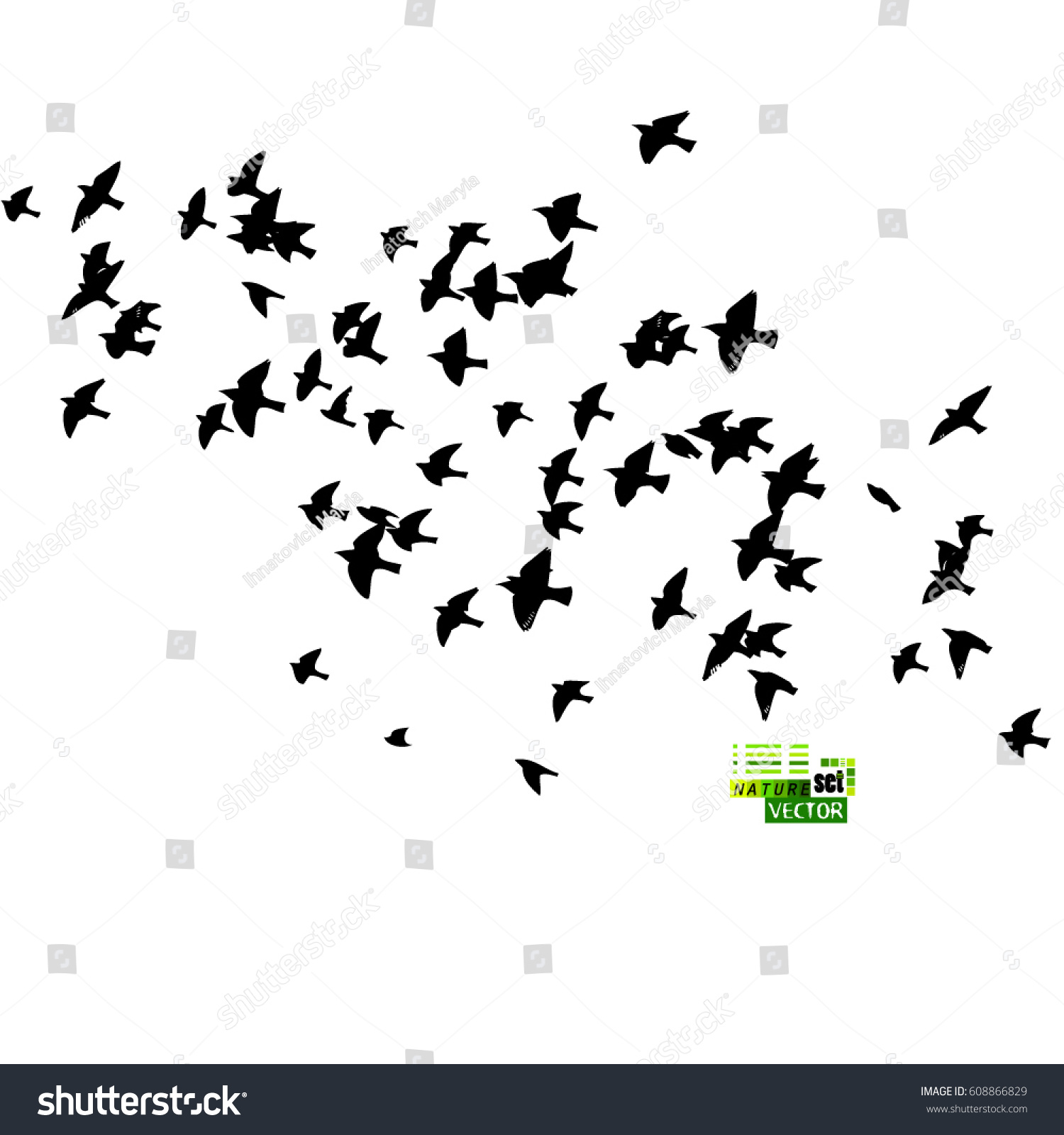 Flock Birds Silhouette Vector 608866829