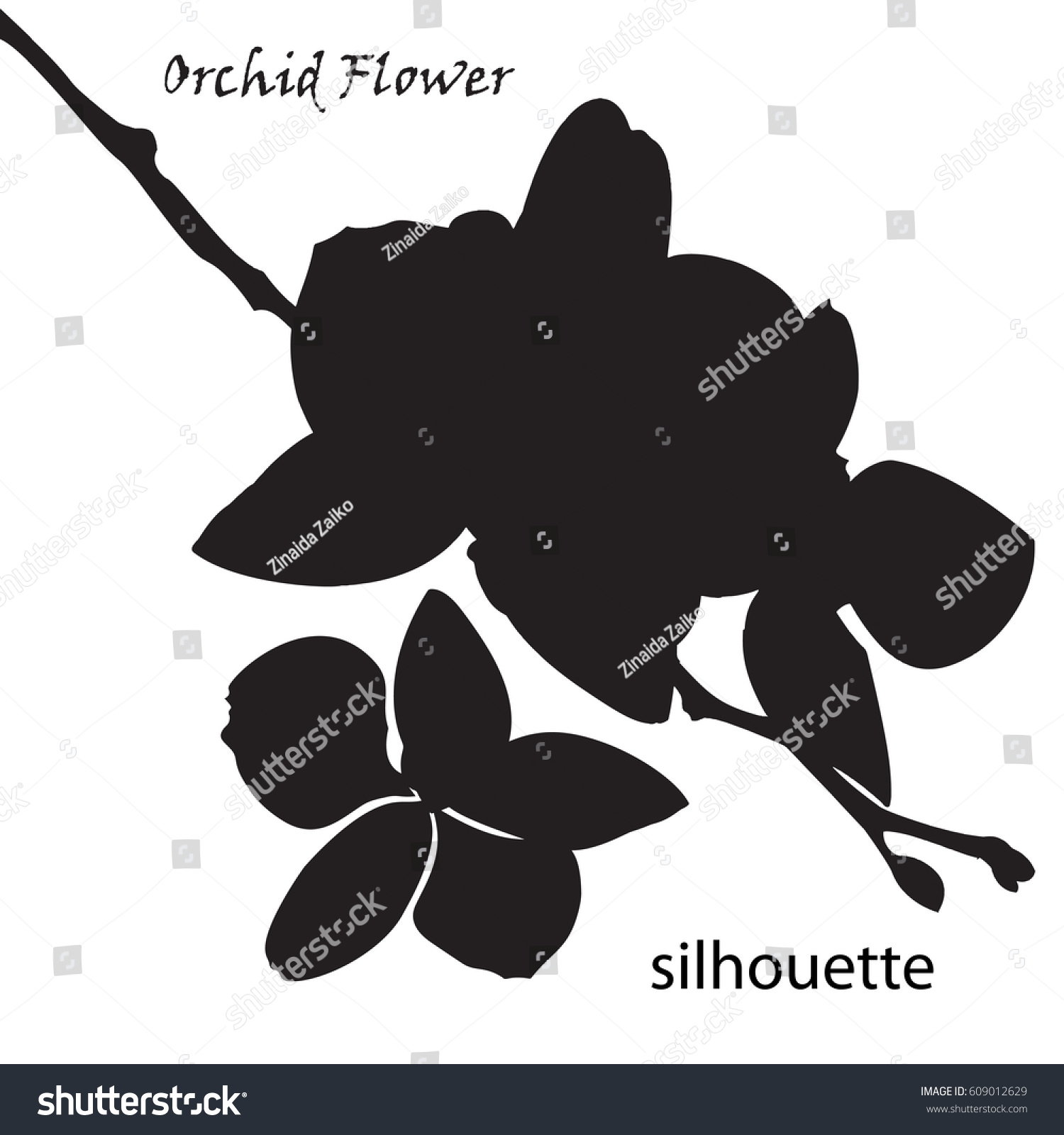 Silhouette Orchid Flower Isolated White Stock Vector Shutterstock