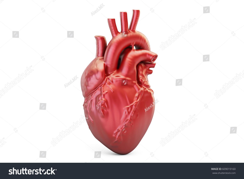 Human Heart 3 D Rendering Isolated On Stock Illustration 609019160 ...