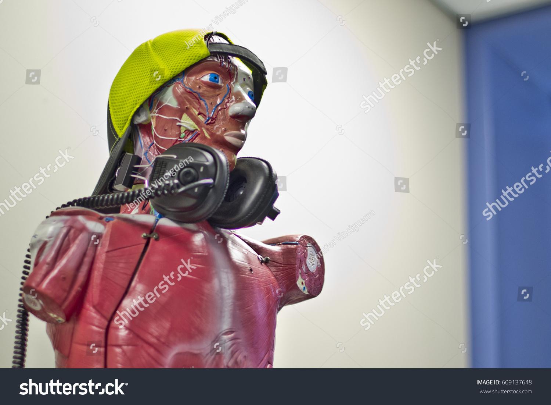 Human Anatomy Mannequin Wearing Headphones Backwards Stock Photo