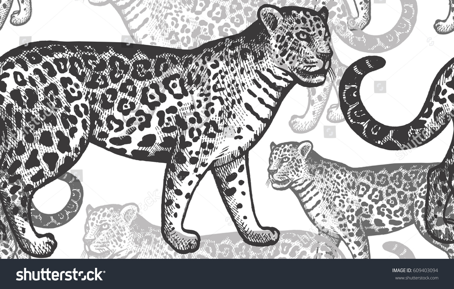 Black jaguars on a white background hand drawing of an animal seamless vector pattern