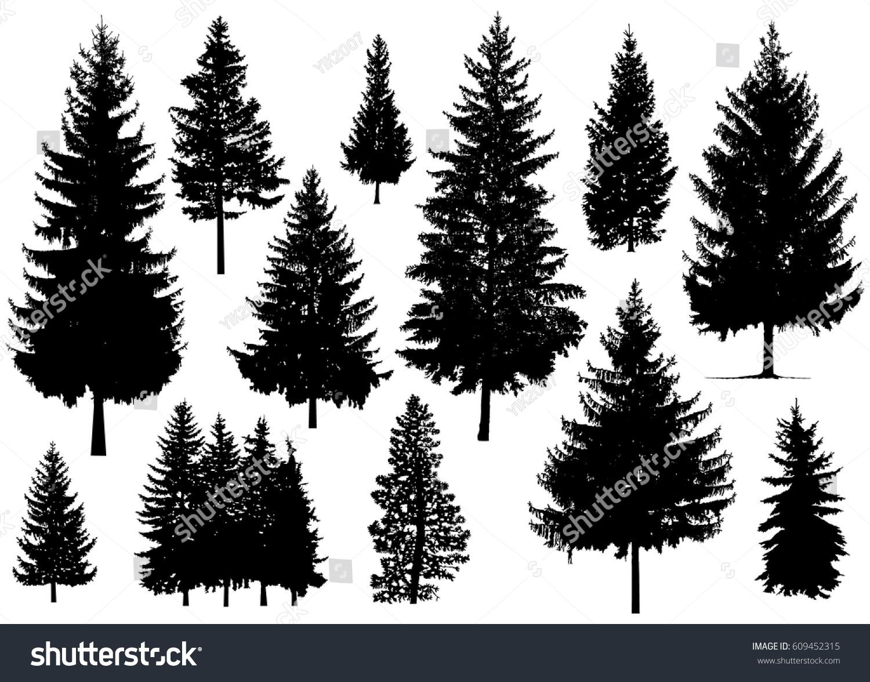 set silhouette pine trees stock vector 609452315 pine trees vector png vector pine trees silhouettes free