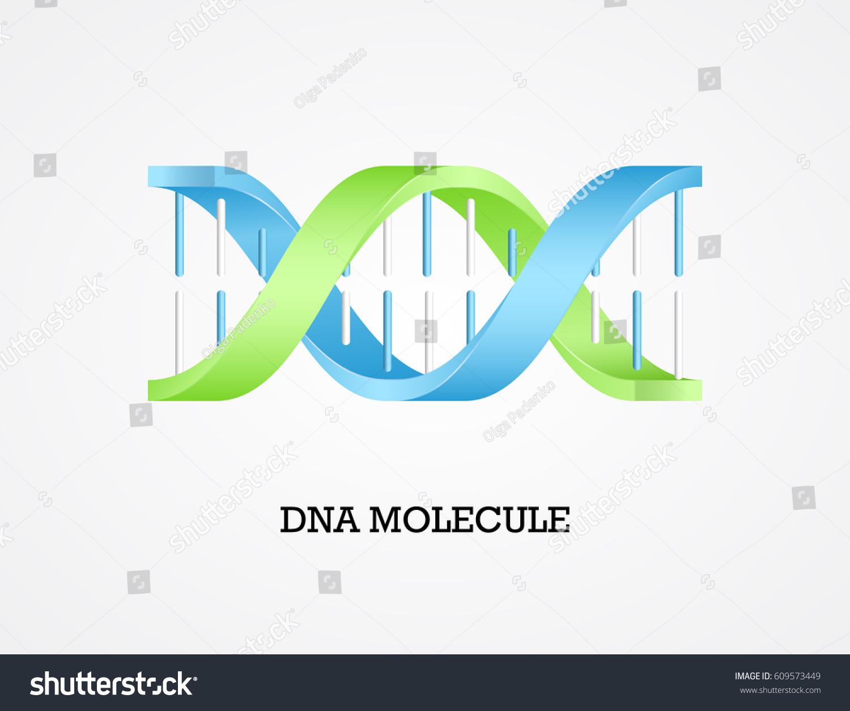 Human Dna Molecule Symbol Dna Symbol Stock Vector Royalty Free